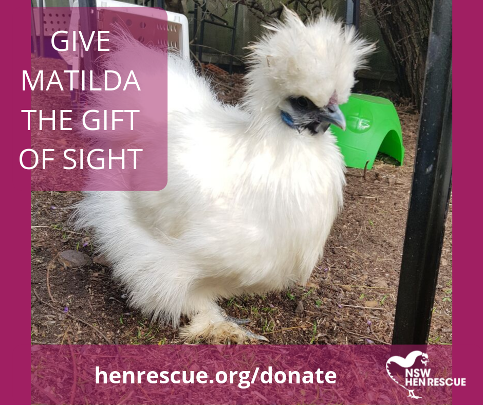 Give Matilda the Gift of Sight